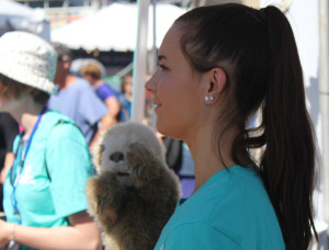 Marketing intern at the National Aquarium in Baltimore, Kelsey Voelker, is capturing the attention of families with the puppet sloth at the Read to Reef Book Club booth at the Baltimore Book Festival. Photo by Brittney Everett.