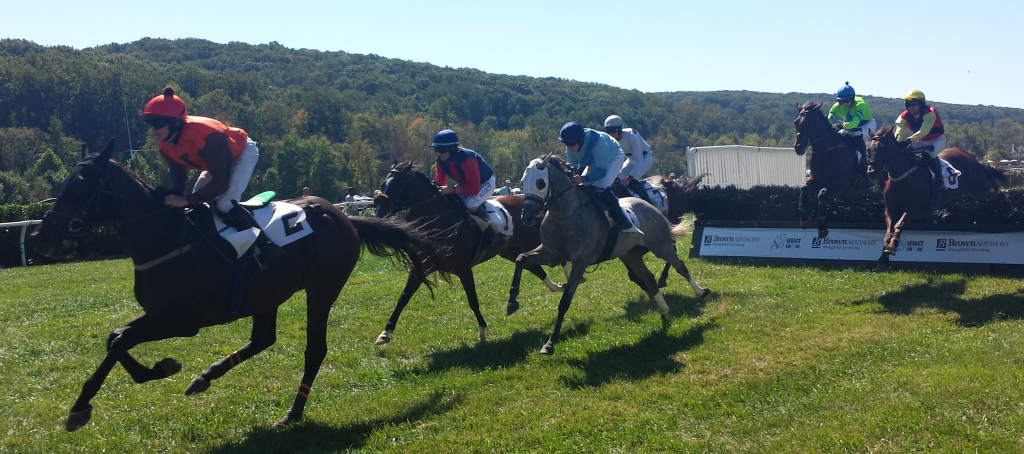 Second Amendment leads in the Fourth Horse Race by Sodexo. Photo by Taariq Adams